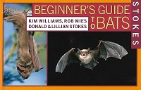Stokes- Beginners Guide to Bats