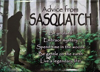 Magnet - Advice from Sasquatch