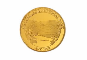 Gold Double Sided Coin