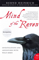 Mind of a Raven