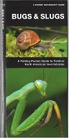 Pocket Naturalist Guide - Bugs & Slugs