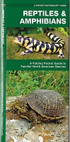 Pocket Naturalist Guide - Reptiles and Amphibians