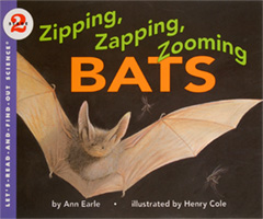 Zip, Zap, Zooming Bats