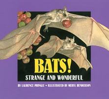 Bats! Strange and Wonderful