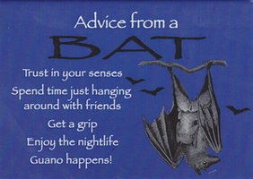 Your True Nature Magnet- Advice from a Bat